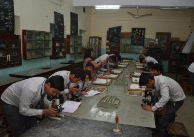 Laboratories-5